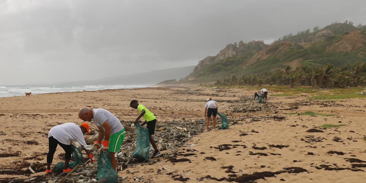 Image of a volunteer beach clean